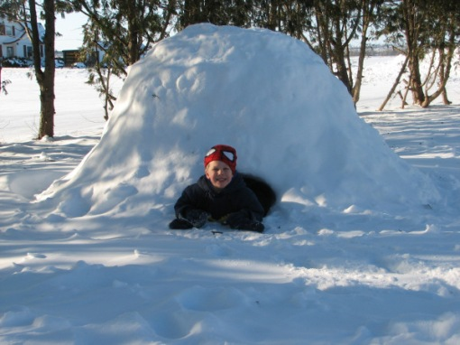 William by the Igloo